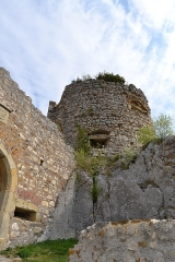 Ruines du château de Landskron -  2017-04-11 Landskron 049