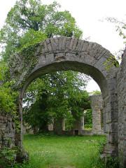 Ruines du château de Morimont - English: Castle Morimont - Archway