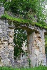 Ruines du château de Morimont - English: Castle Morimont