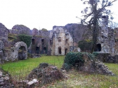 Ruines du château de Morimont -  Château du Morimont (XIIe s.)