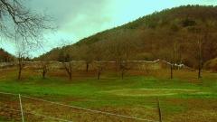 Ancienne abbaye de Marbach -  Mur d'enceinte de Marbach