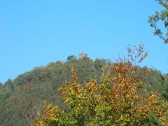 Châteaux de Guirsberg, de Haut-Ribeaupierre et de Saint-Ulrich - Château du Haut-Ribeaupierre (642 m) à Ribeauvillé (Haut-Rhin, France).