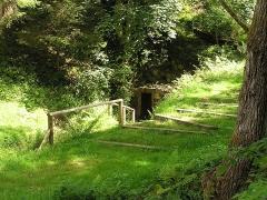 Anciennes mines d'argent du massif de Neuenberg -  La mine Gabe Gottes 195