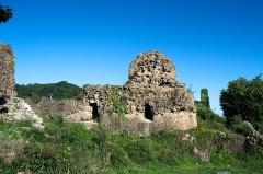 Ruines du château d'Engelbourg -  DSC_5845