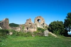 Ruines du château d'Engelbourg -  DSC_5836