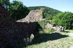 Ruines du château d'Engelbourg -  DSC_5796