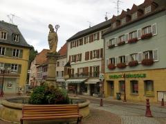 Fontaine Saint-Thiébaut -  Thann  13