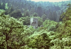 Ruines du château de Hagueneck - Français:   Château de Hagueneck