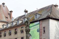 Ancienne abbaye bénédictine Saint-Grégoire -  Munster 3