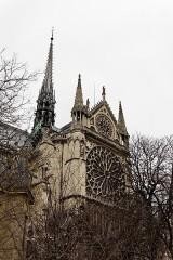 Cathédrale Notre-Dame -  Vue extérieure de la cathédrale Notre-Dame de Paris.