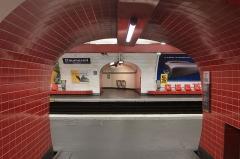 Métropolitain, station Daumesnil -  Accès des quais de la ligne 6 du métro de Paris à la station Daumesnil.