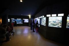 Ancien Musée National des Arts Africains et Océaniens, devenu Cité nationale de l'histoire de l'Immigration -  Aquarium du palais de la Porte Dorée