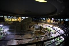 Ancien Musée National des Arts Africains et Océaniens, devenu Cité nationale de l'histoire de l'Immigration -  Aquarium tropical du Palais de la Porte Dorée