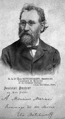Institut Pasteur -