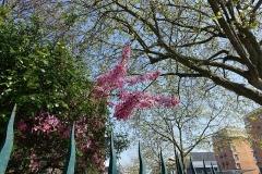 Eaux du Pré-Saint-Gervais : Regard des Maussains -  Regard des Maussins @ Paris
