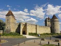 Château - Château de Blandy-les-Tours.