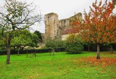 Château (vestiges) -  Ganne Tower