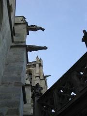 Eglise Saint-Aspais -  Gargouilles de l\'église Saint Aspais à Melun.