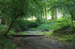 Domaine dit Désert de Retz - English:   Dry river in the Désert de Retz park in Chambourcy, France