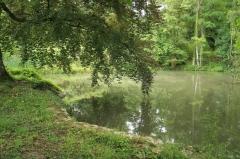 Domaine dit Désert de Retz - English:   Pond in the Désert de Retz park in Chambourcy, France