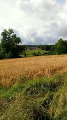 Ancien château de Grignon, actuelle école nationale d'agriculture de Grignon - Français:   Chateau de Thiverval-Grignon vu de l\'arrière