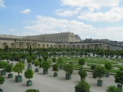 Domaine national de Versailles - Orangerie du château de Versailles (Yvelines, France).