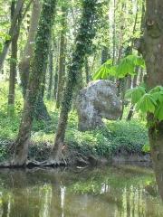 Menhirs de la propriété Talma, dits la femme et la fille de Loth -  La Femme de Loth, menhir appartenant à l'un des deux alignements dits des Pierres Frittes à Brunoy (Essonne)