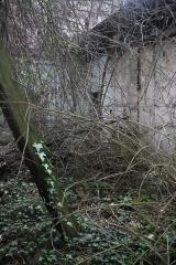Dépôt de bois -  Partie de la gare des Carbonnets effondrée retournant a la nature
