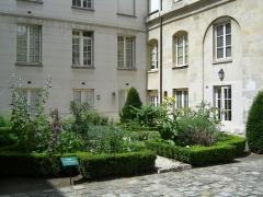 Ancien hôtel de Miramion, ancien musée de l'Assistance publique -  Jardin des plantes médicinales, dans la cour intérieure Photo personnelle (own work) de Marianna