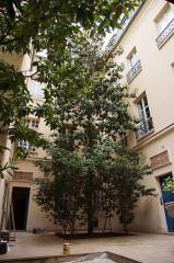 Immeuble - Français:   Cour intérieure