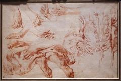 Musée Jacquemart-André - English: Watteau exhibition at Teylers Museum (2017)