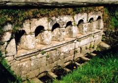Fontaines dites du Coq, de la Vierge et des Sept Saints de Bretagne - Brezhoneg: Bulad-Pestivien. Feunteun ar Seizh Sant. s-w