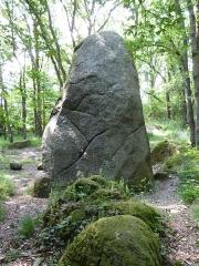 Menhir de Guihallon - Français:   Autre face du menhir de Guihalon