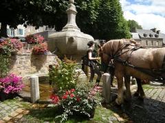 Fontaine -  Festival de musique mécanique de Pontrieux, 2009; chevaux à la fontaine