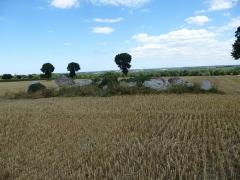 Allée couverte de la Hautière dite Le Tombeau - Français:   Allée couverte de la Hautière. (commune de Trégon, département des Côtes-d\'Armor, région Bretagne).