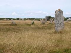 Alignements mégalithiques du Toulinguet -  Alignement de Lagatjar; Menhir; Mégalith; Hinkelstein