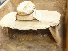 Musée préhistorique à Pors Carn - Français:   Coffre funéraire datant de l\'Âge du bronze trouvé dans un tertre près de la carrière du Bilou au Conquet avec comme mobilier intérieur des restes d'ossements et des galets de grève; sa dalle de recouvrement est surmontée de deux pierres quartzeuses (Musée de la préhistoire finistérienne de Penmarc\'h)