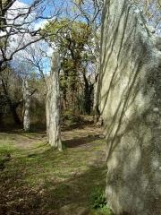 Trois menhirs de Kerfland et bande de terrain autour - Français:   Les trois menhirs de Kerfland