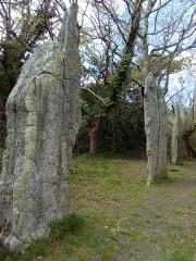 Trois menhirs de Kerfland et bande de terrain autour - Français:   Menhir