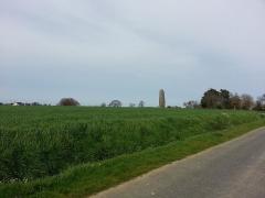 Menhir de Champ-Dolent -  Menhir du Champ-Dolent