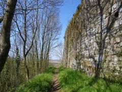 Restes du Vieux-Château -  les remparts du chateau de hedé
