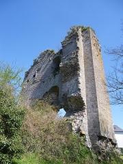 Restes du Vieux-Château -  les ruines du chateau de hedé
