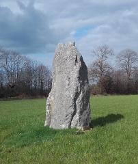 Menhir dit La Pierre Blanche - Menhir la Pierre Blanche près de Pocé les Bois (35)