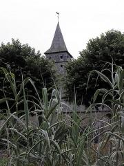 Ancienne église Saint-Lunaire - Français:   Clocher de la vieille église de Saint-Lunaire (35) au milieu des fleurs.