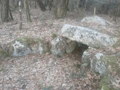 Dolmen à galerie de Mané-Brisil - English: Site mégalithique près de Carnac