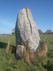 Menhir de Kerluhir - English: Un menhir près de Carnac