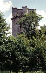 Ancienne forteresse ou ancien château de Largouët -  Tour d'Elven (in der Nähe von Vannes)