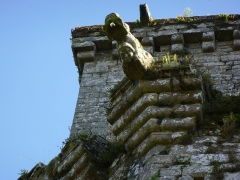 Ancienne forteresse ou ancien château de Largouët -  forteresse de largoet , gargouille