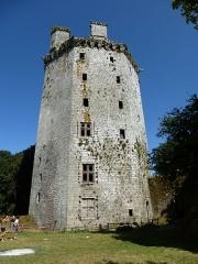Ancienne forteresse ou ancien château de Largouët -  forteresse de largoet , le donjon