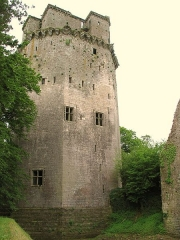 Ancienne forteresse ou ancien château de Largouët - English: Donjon of Largoet
